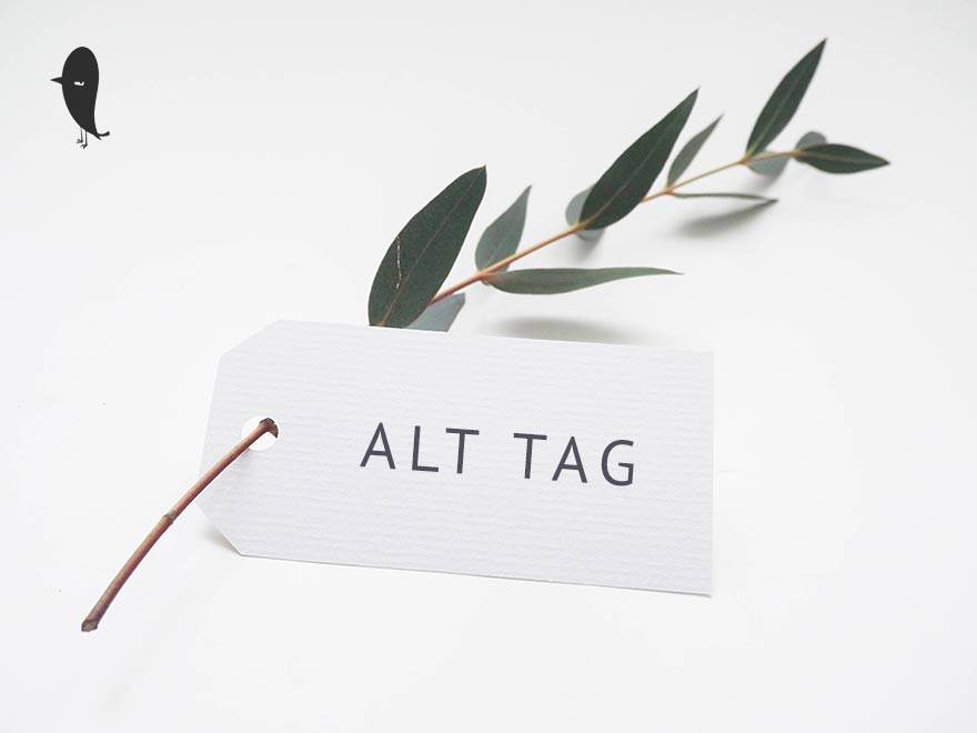 alt tags optimieren