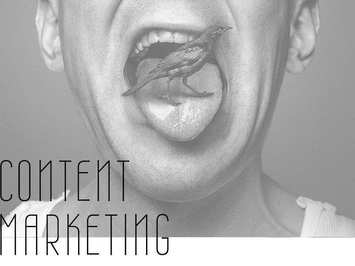 contentr-marketing-training-slidebird-online-agentur-wien