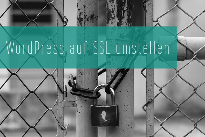 WordPress auf SSL umstellen | Einfache Anleitung + SEO